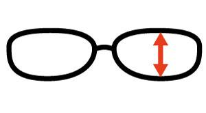 Výška očnice